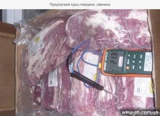 Предлагаем куры,говядина ,свинина