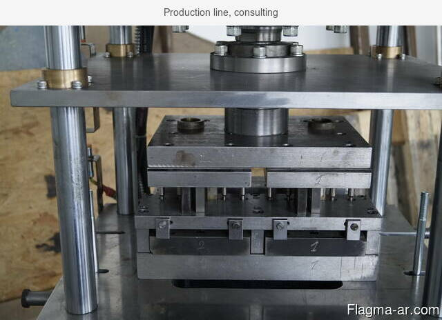 Production line, consulting