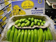 Прямые поставки бананов с Эквадора