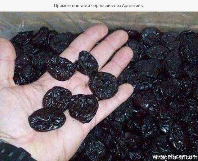Прямые поставки чернослива из Аргентины
