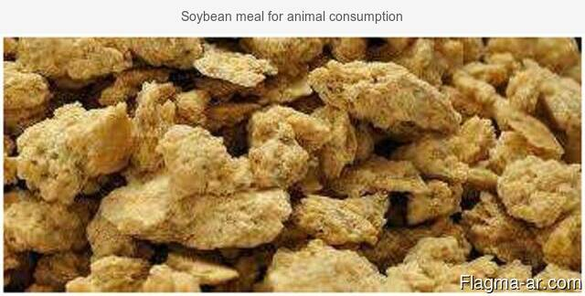 Soybean meal for animal consumption